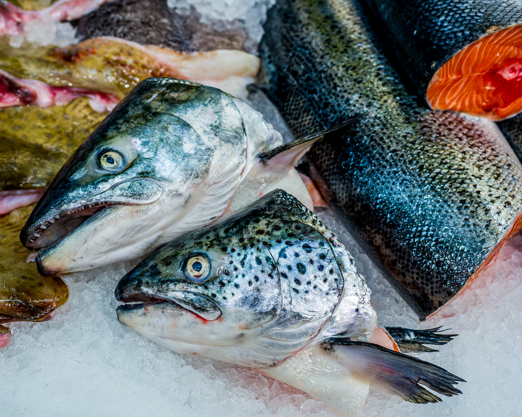 Chinese grocery store middletown new jersey the fish for 1 fish 2 fish store