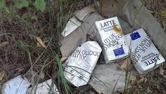 latte san pietro al tanagro 02