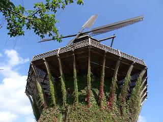 Molino de viento en el parque de Sanssouci