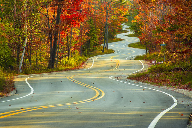 Road, Curvy, Door County, Fall, Fall Foliage, Curves, Winding,
