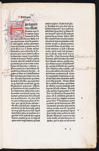 Thomas Aquinas: Super primo libro Sententiarum Petri Lombardi - Manuscript annotations