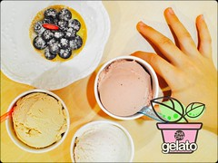 CHA CHA gelato