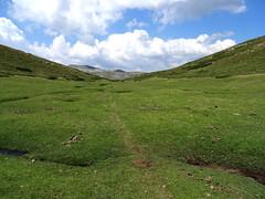 Premier niveau de pelouses : pozzi et pelouses dans la remontée du Frauletu