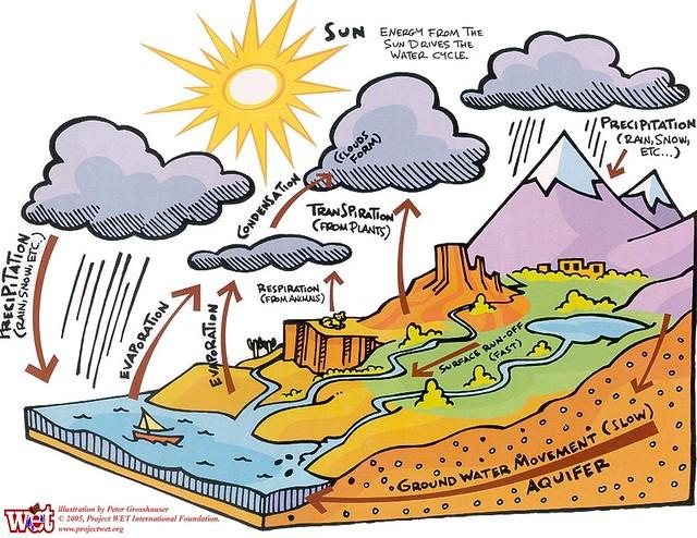 cicle de l'aigua