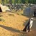 Penguins at Banham Zoo