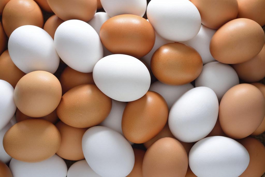 علاج البيض لتساقط الشعر