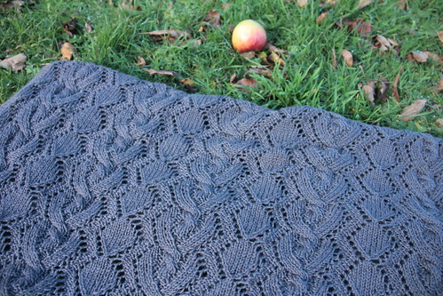 {Tricot} Cable and Lace Baby Blanket