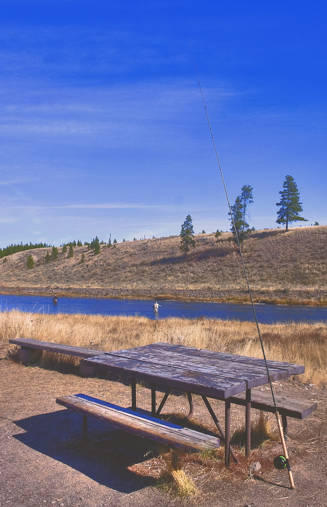 Fly fishing in yellowstone national park y 39 all come for Fishing in yellowstone