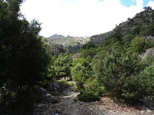 Le replat de la bergerie de l'Ancinu, l'enclos-murets perché et Punta a Corniaccia