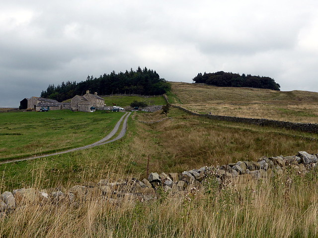 Ditch west of Milecastle 38