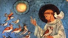 san Francesco e gli uccelli