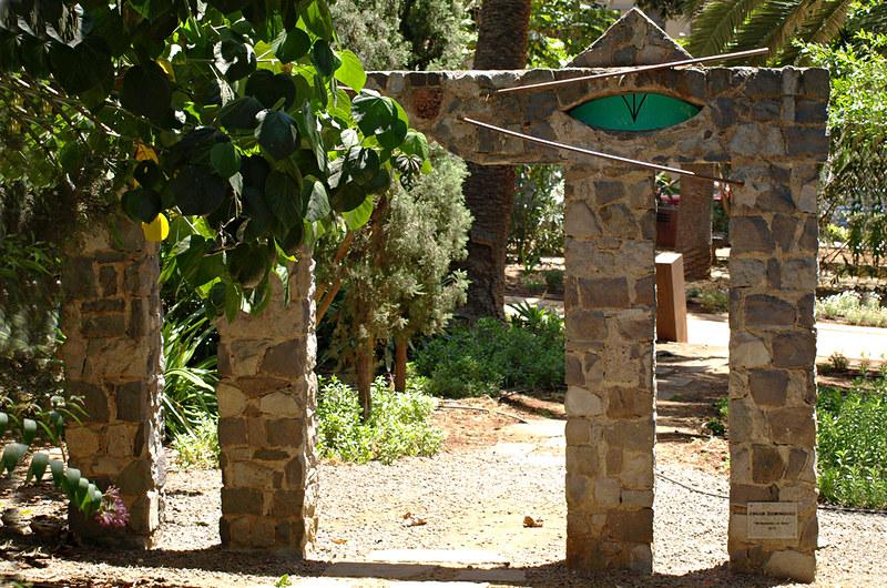 Oscar Dominguez Cat, Parque Garcia Sanabria, Santa Cruz, Tenerife