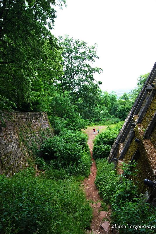 Дорожка возле стен Мариенбурга