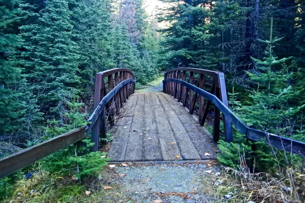 Cabin Lake trail 3