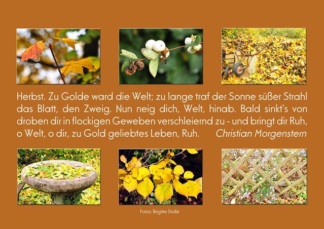 Herbst Gedicht Herbstgedicht Christian Morgenstern Fotos Brigitte Stolle Oktober 2015