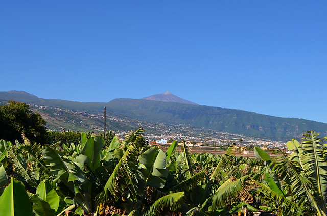 Orotava Valley and Mount Teide, Tenerife