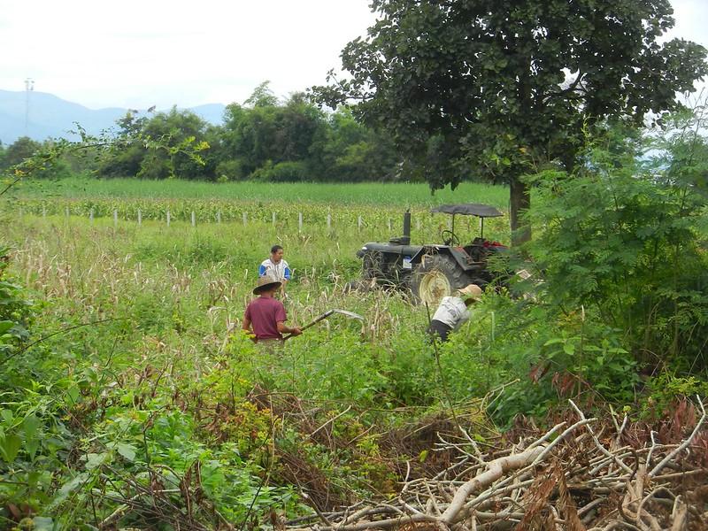 Окрестности Инле, Бирма