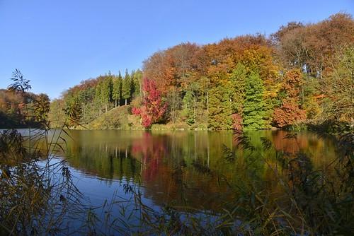 Le miroir parfait aux mille couleurs flickr photo sharing for Glacage miroir 2 couleurs