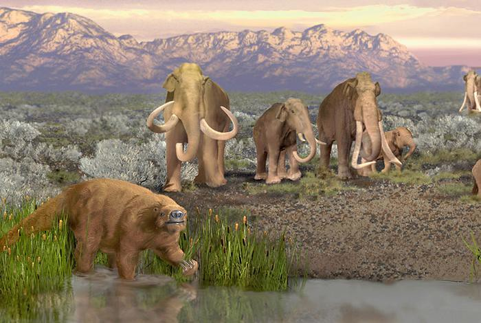 Artist's depiction of the late Pleistocene landscape with some of the megaherbivores that became extinct.