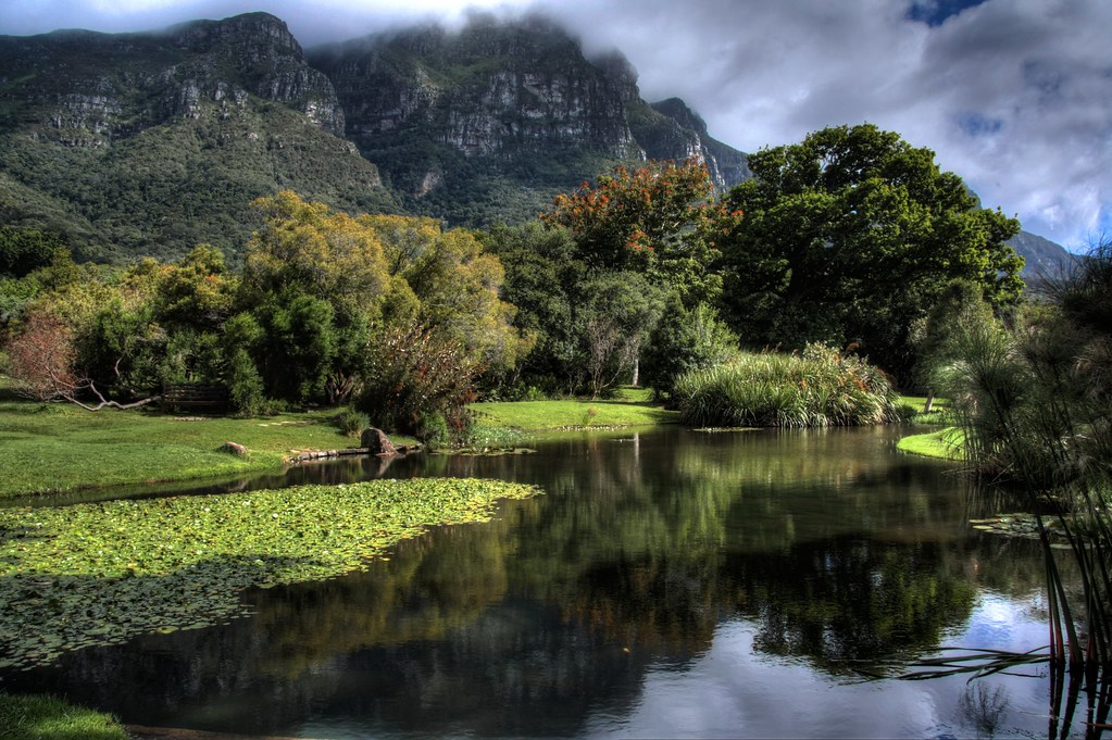 Kirstenbosch National Botanical Garden Kirstenbosch South Flickr