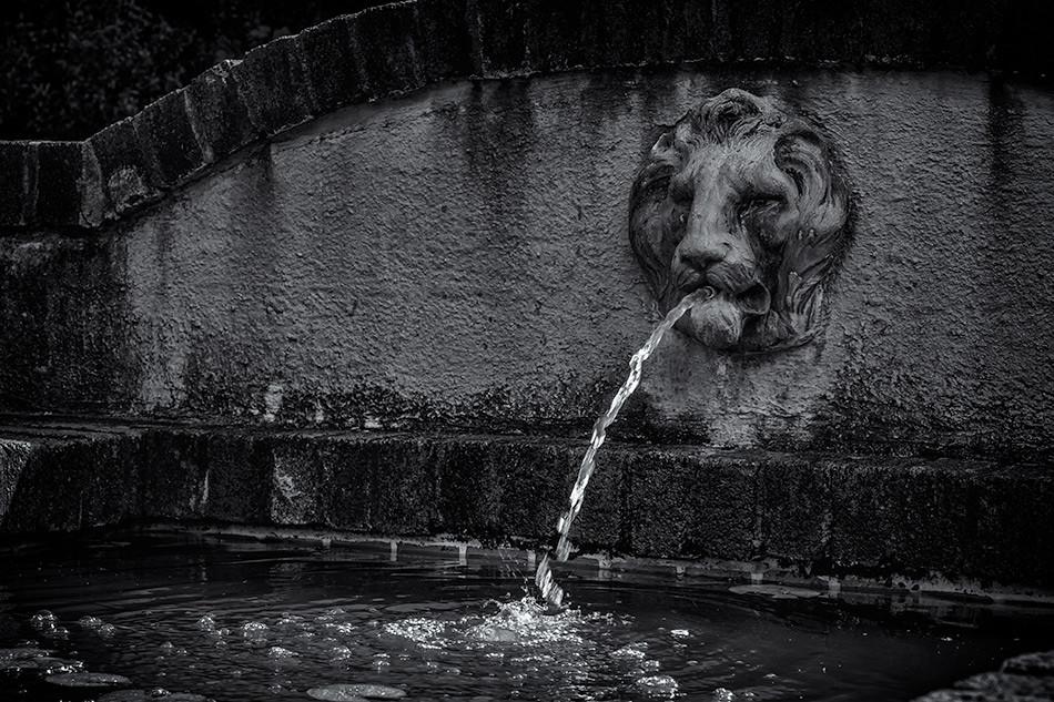 Fountain, Reynolda Gardens, Winston-Salem, NC