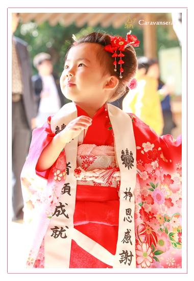 七五三写真,熱田神宮(名古屋市熱田区),ロケーション撮影,出張撮影,着物,和装,自然,おしゃれ,全データ