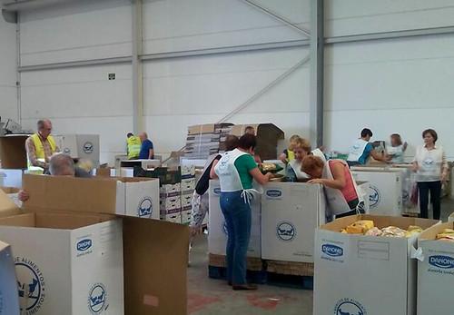 Noticias de ag imes el banco de alimentos de las palmas recogi kilos de comida - Banco de alimentos de las palmas ...