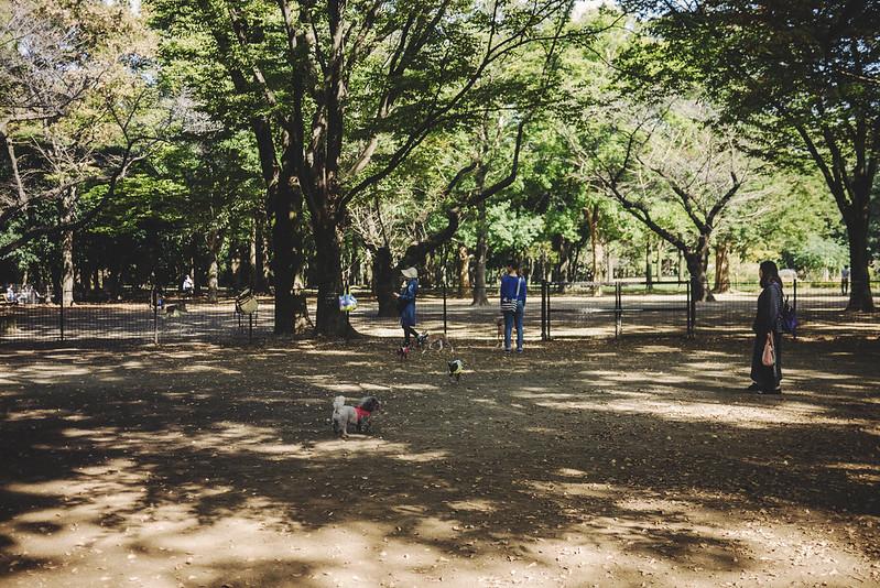yoyogiparken