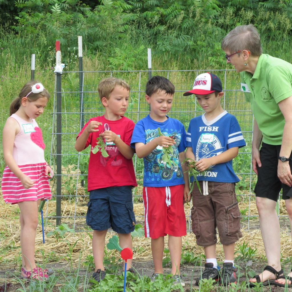 The Master Gardener Program In Pierce County Master Gardener Program