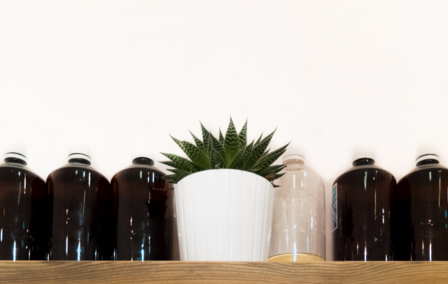 brown bottles and aloe vera succulent in white plant pot