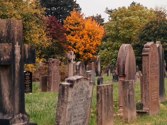 cathays cemetery in autumn