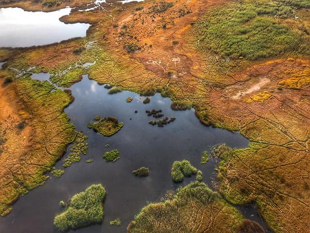 Vista aérea del Delta del Okavango (Botswana)