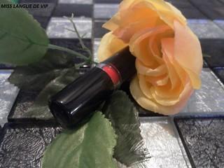 Rouge à lèvres Couleurs & Soin SO'BIO ETIC rouge