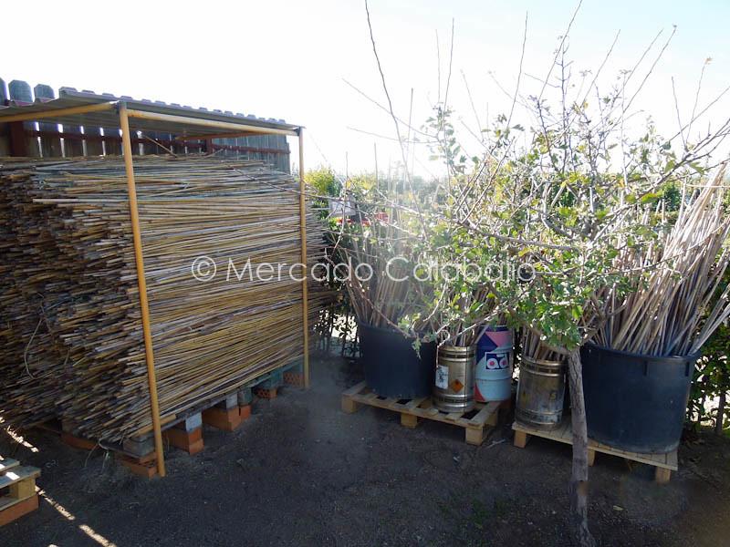 MERCADO DE CAMPO-10