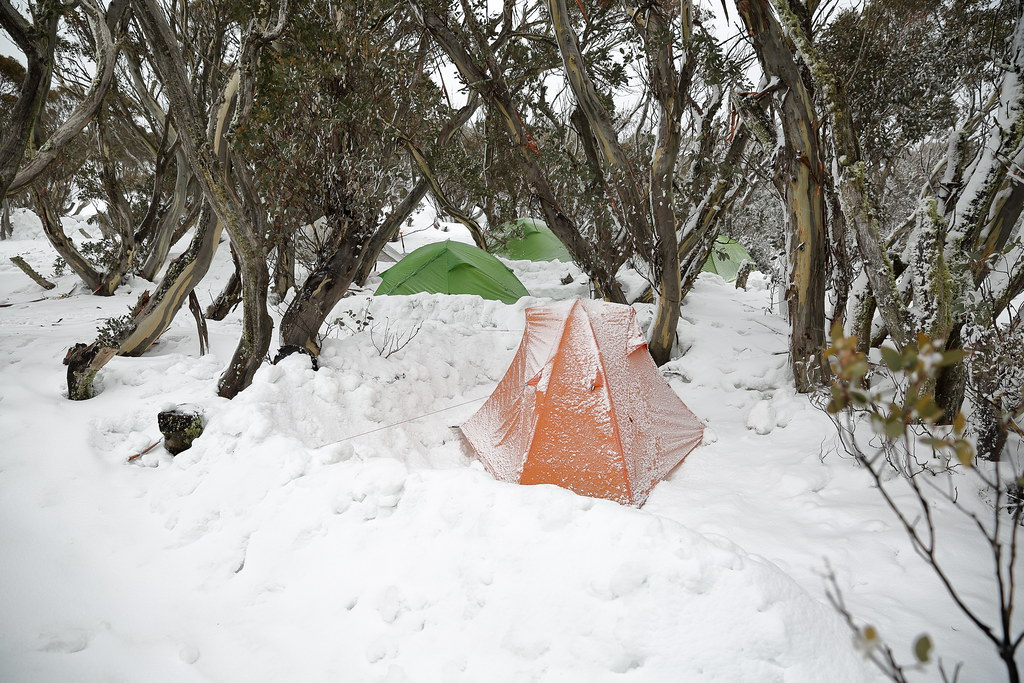 Free online personals in snow camp