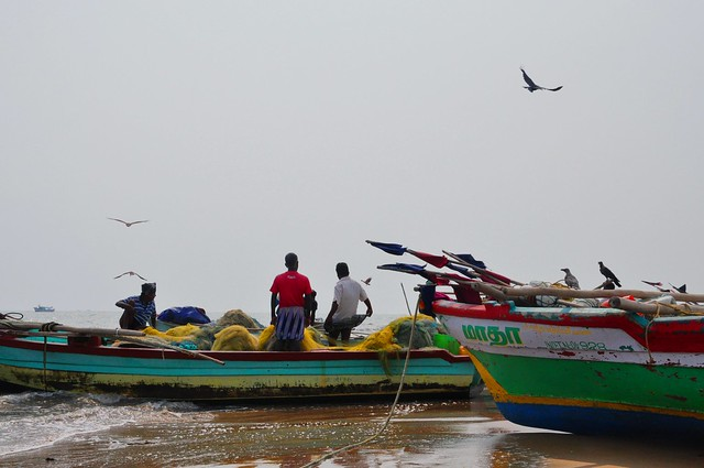 Fishermen venture out into the sea for their daily catch. The international boundary is just 15.9 km away from Point Calimere.