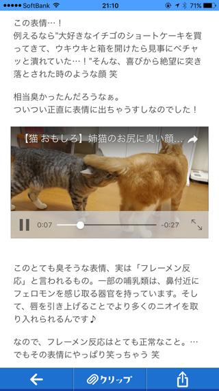 インライン動画