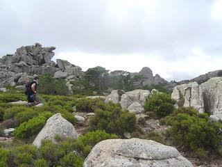 Dans la montée au pied du Capellucciu avec le Capellu en arrière-plan