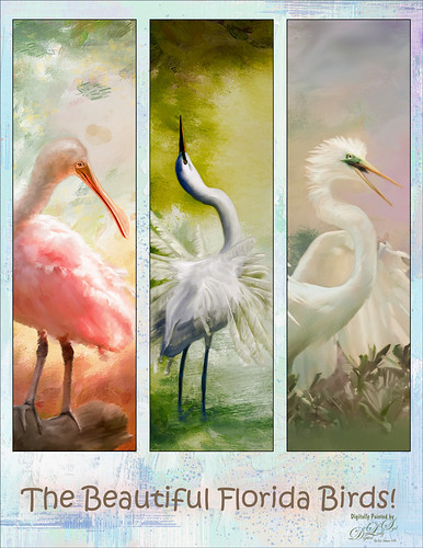 Image of three painted birds