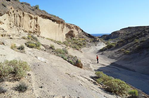 Gulley, San Blas Nature Reserve, San Miguel de Abona, Tenerife