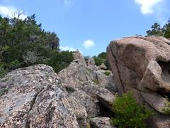 La rampe rocheuse remontée en RG du vallon