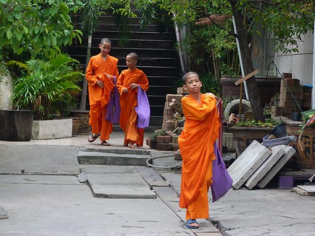 Monjes budistas en Bangkok (Tailandia)