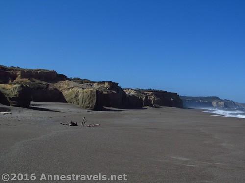 The sandhills rise into sandstone cliffs along Floras Lake Beach, Oregon