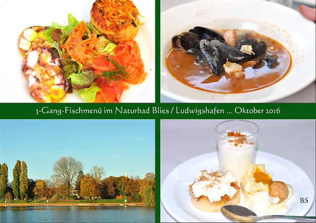 Ludwigshafen Bliesbad Naturbad Blies Goldener Oktober 2016 3-Gang-Menü mit Fischsuppe ... Fotos und Collagen: Brigitte Stolle 2016