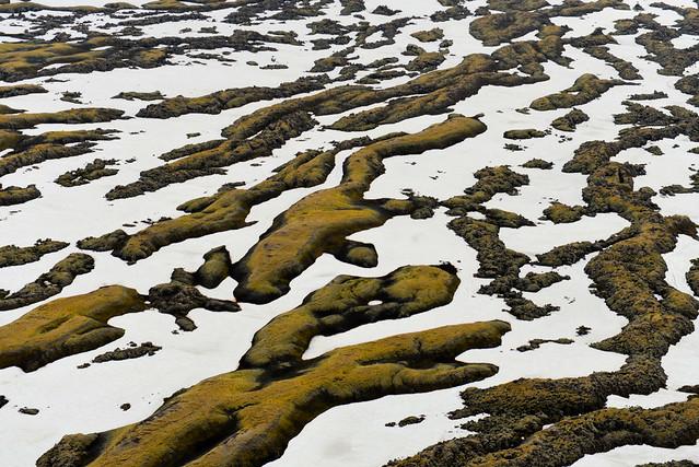 Campos de lava en el sur de Islandia