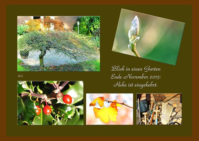 Der Garten Ende November Ruhe Winterruhe Pflanzen Foto Brigitte Stolle 2015