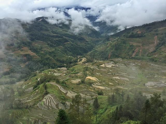 Arrozales de Yuanyang (Yunnan, China)