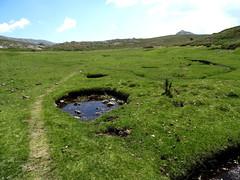 Premier niveau de pelouses : pozzi et chevaux dans la remontée du Frauletu
