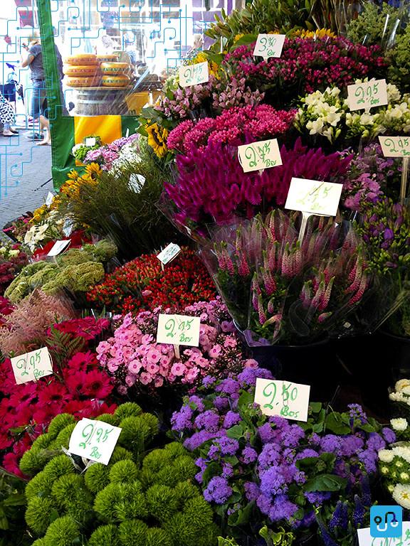 Os holandeses adoram flores