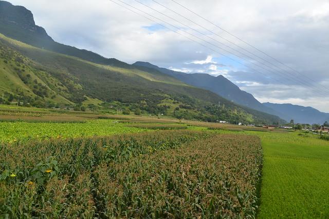 虎跳峽大壩若蓋下去,將淹沒的萬畝良田。攝影:郭志榮。